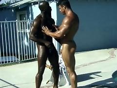 Black gay dicks fucking