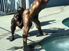 gay black porn