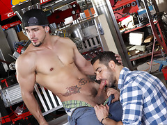 Hot muscle men