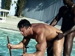 Horny black guys fucking