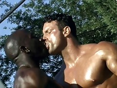 Gay black porn fucking