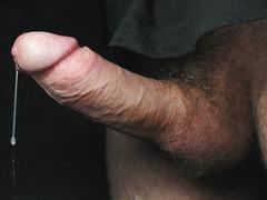14 inch gay cock